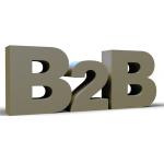 E-TİCARET B2B WEB (100 USER)